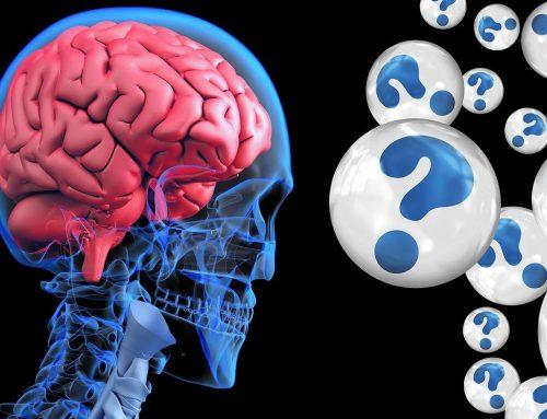 Neurowissenschaftliche Verhaltensforschung: Was führt zuverlässig zu Verhaltensänderungen?
